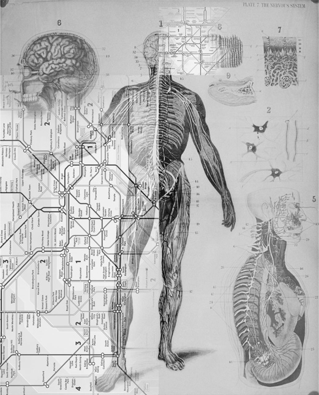 A Focus On: The Art and Science of Clinical Neurology - Oxford Medicine