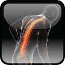 Oxford Textbook of Musculoskeletal Medicine$